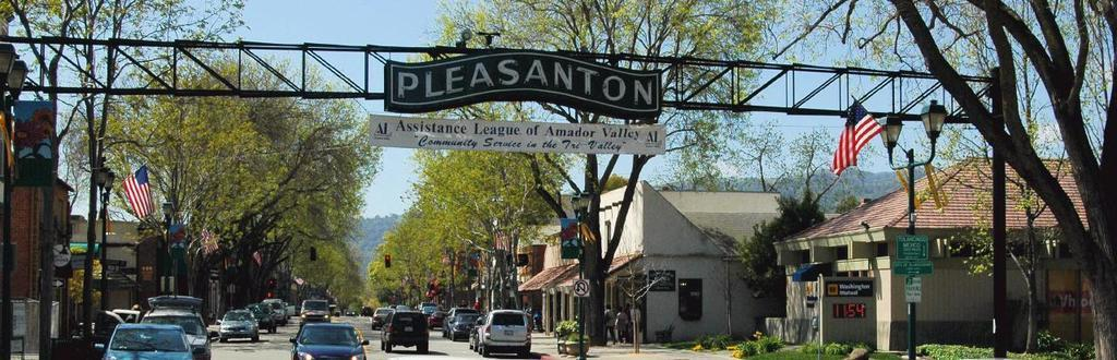 Pleasanton-Custom-Garage-Doors-and-Commercial-Doors